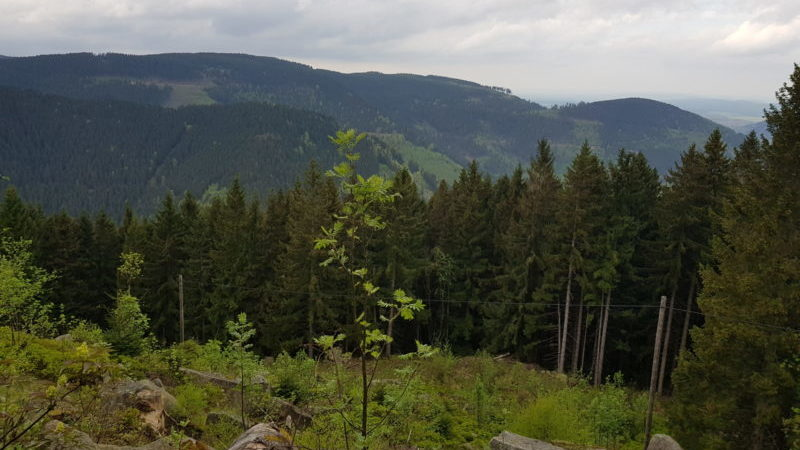 Harzer Lutherweg