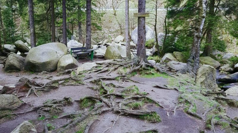 Verlobungsinsel Goethe im Harz